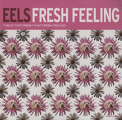 Eels Fresh Feeling