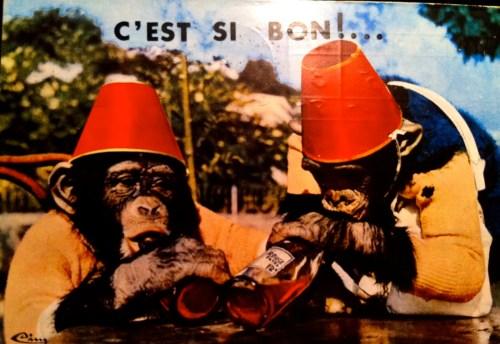 Fez Monkeys