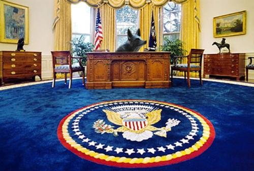 president fox