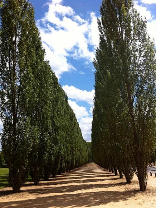 jardins_9